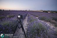 Diario di viaggio fotografico in Provenza, luglio 2015.