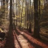 Laghi di Plitvice - paradise