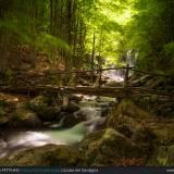Ponte alle Cascate del Dardagna