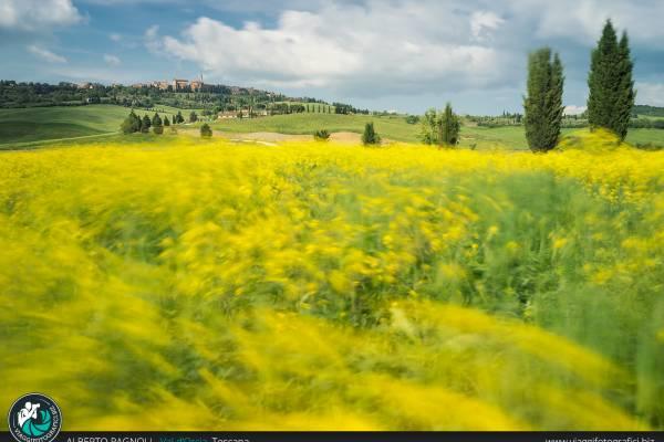 Fotografie di Pienza in provincia di Siena