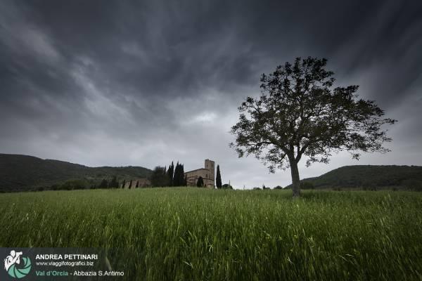 Fotografie dell'Abbazia di Sant'Antimo in Val d'Orcia, Toscana
