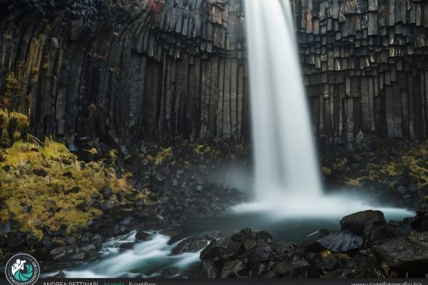 Svartifoss: cascata di Svartifoss Islanda
