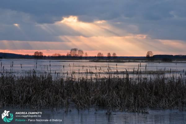 Fotografie del Parco Nazionale di Biebrza nella Polonia dell'Est