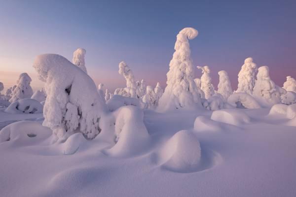 Viaggio fotografico in Lapponia Finlandese.