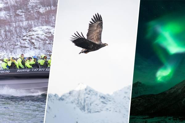 24 ore di follia fotografica alle Lofoten.