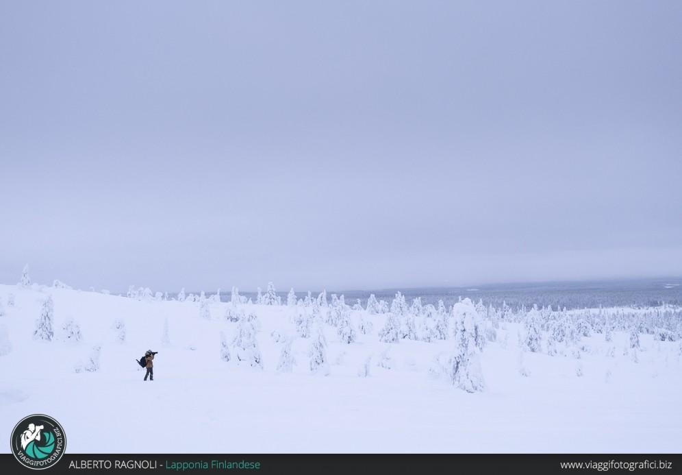 escursione fotografica riisitunturi lapponia finlandese