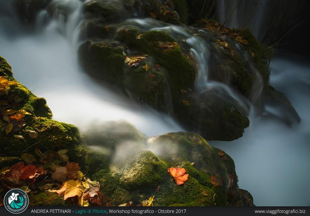 Acqua e foglie ai Laghi di Plitvice