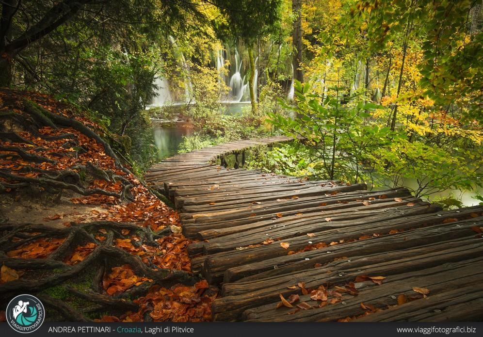 Passerelle ai Laghi di Plitvice