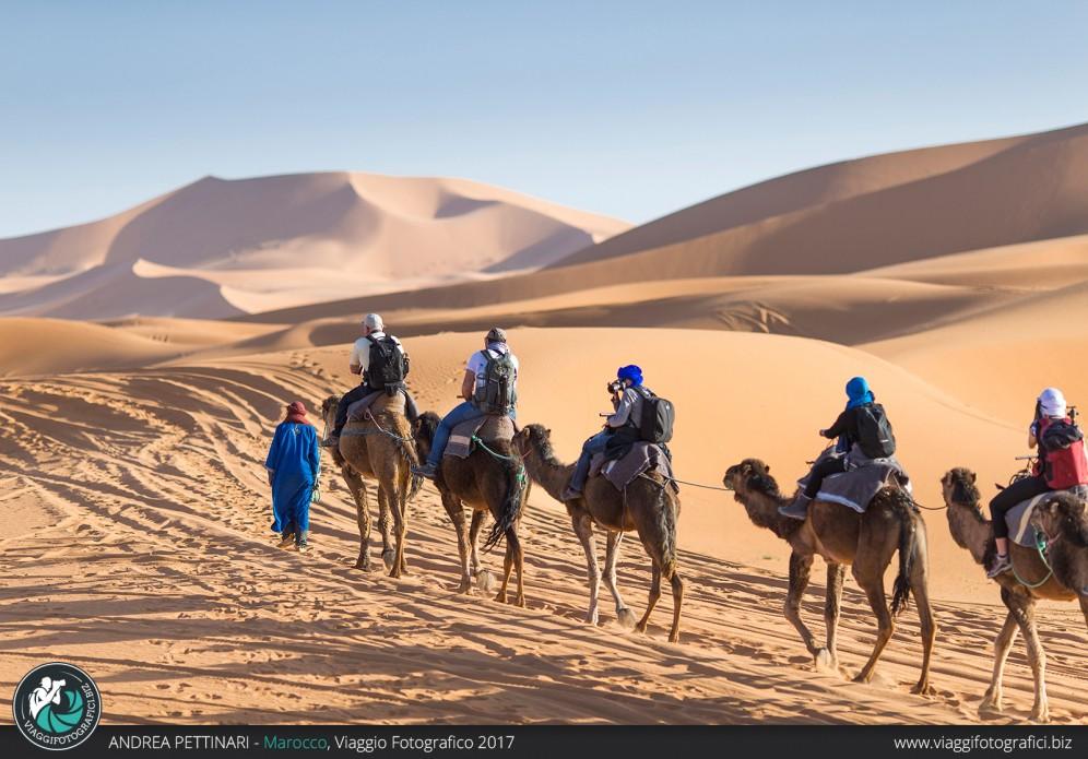 Cammellata fotografica nel deserto