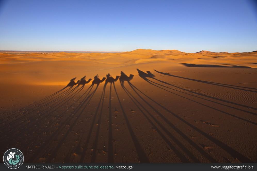 A spasso sulle dune del deserto.
