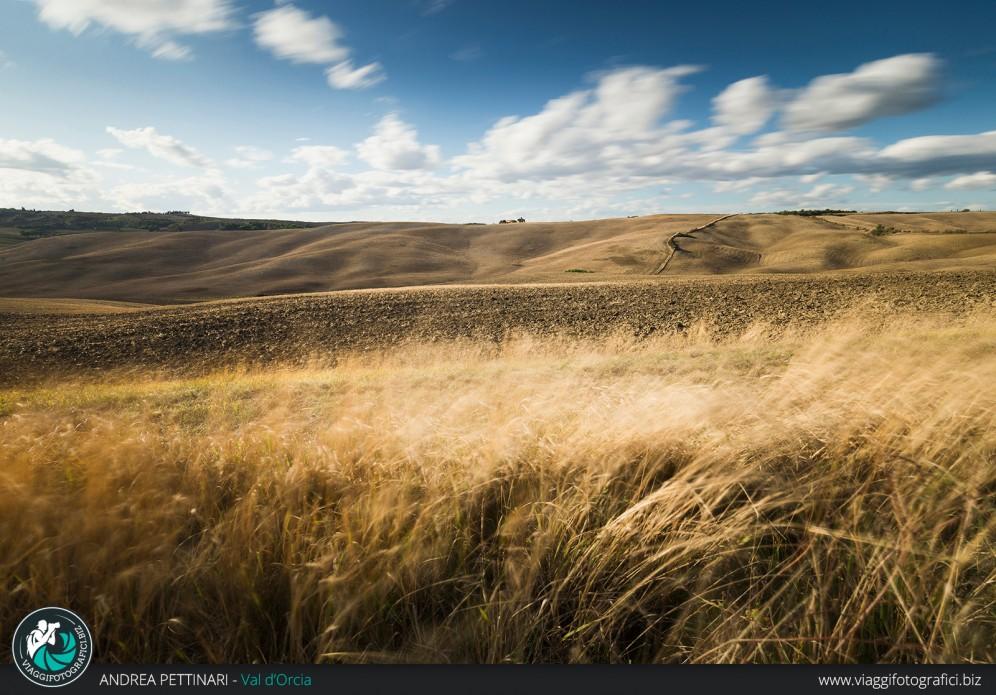 Erba secca e colline