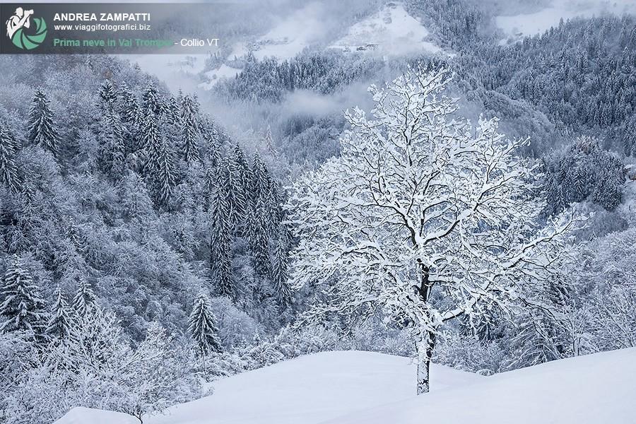 Prima neve in Val Trompia