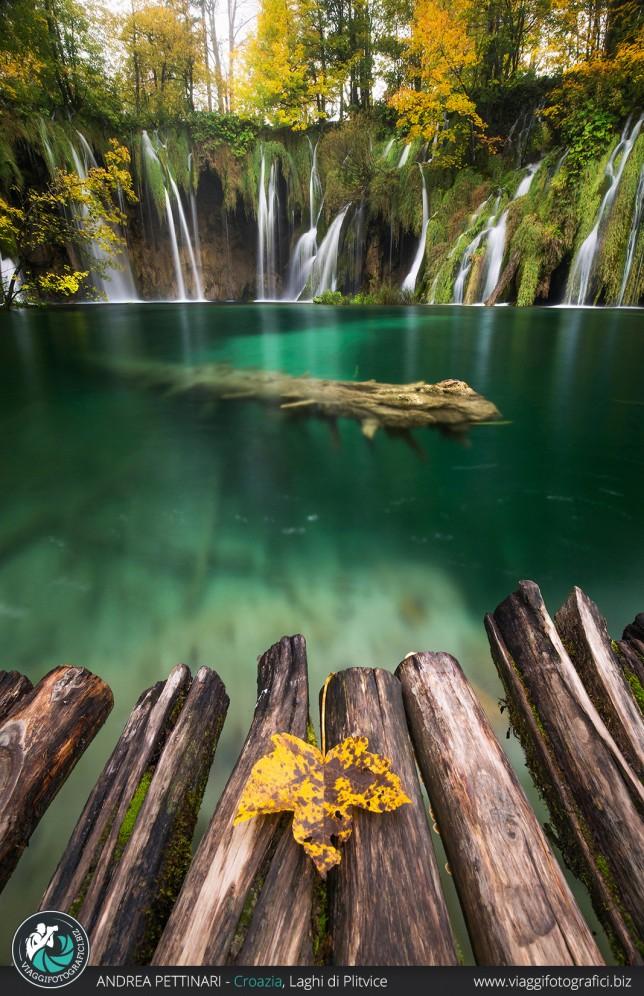 La foglia e la cascata