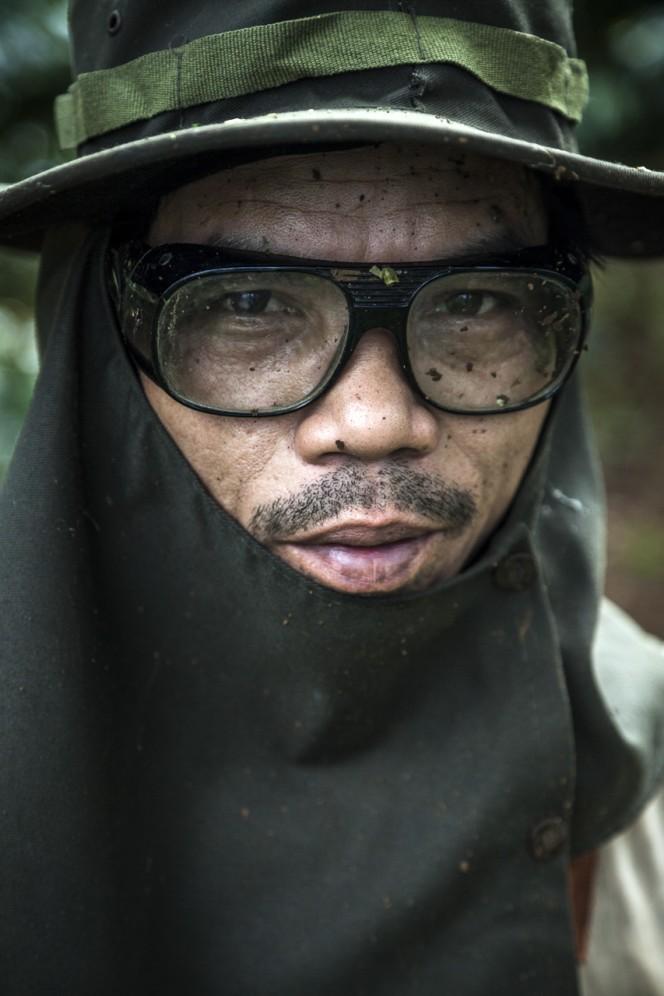 Laos - Lavoratore di una piantagione di caffè nell'altopiano del Bolaven.