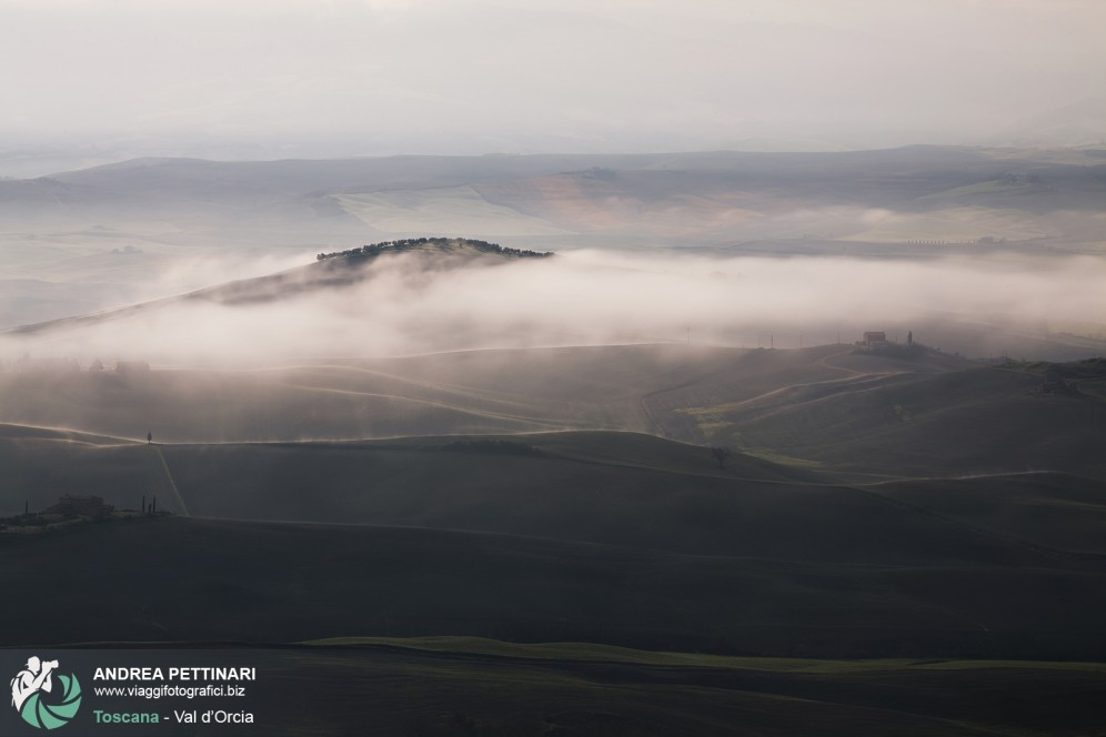 Nebbia in Val d'Orcia