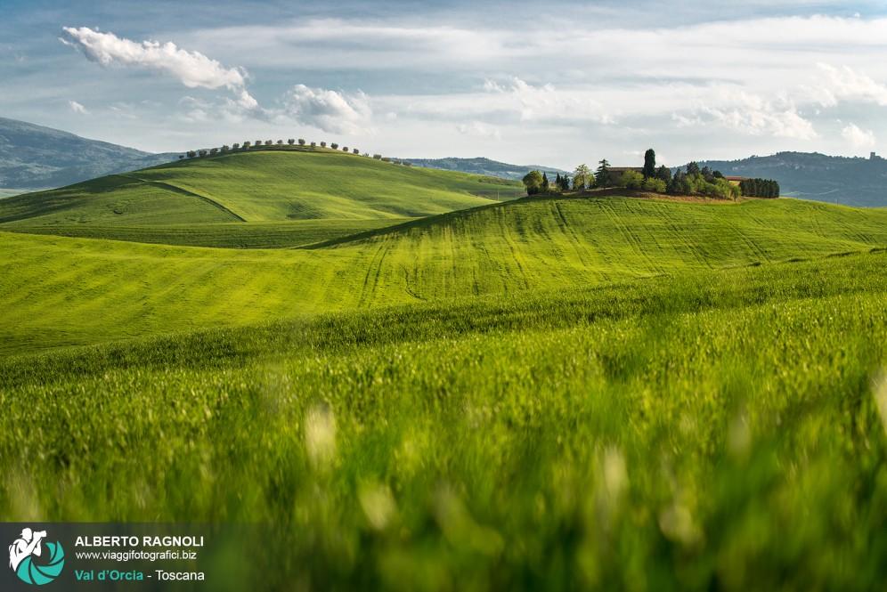 Le verdi colline della val d 39 orcia for Planimetrie del paese di collina