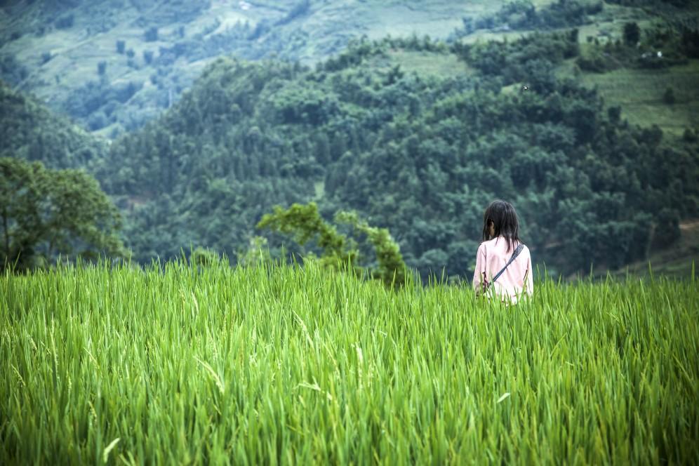 Vietnam - Giovane coltivatrice di riso nelle montagne intorno a Sapa.