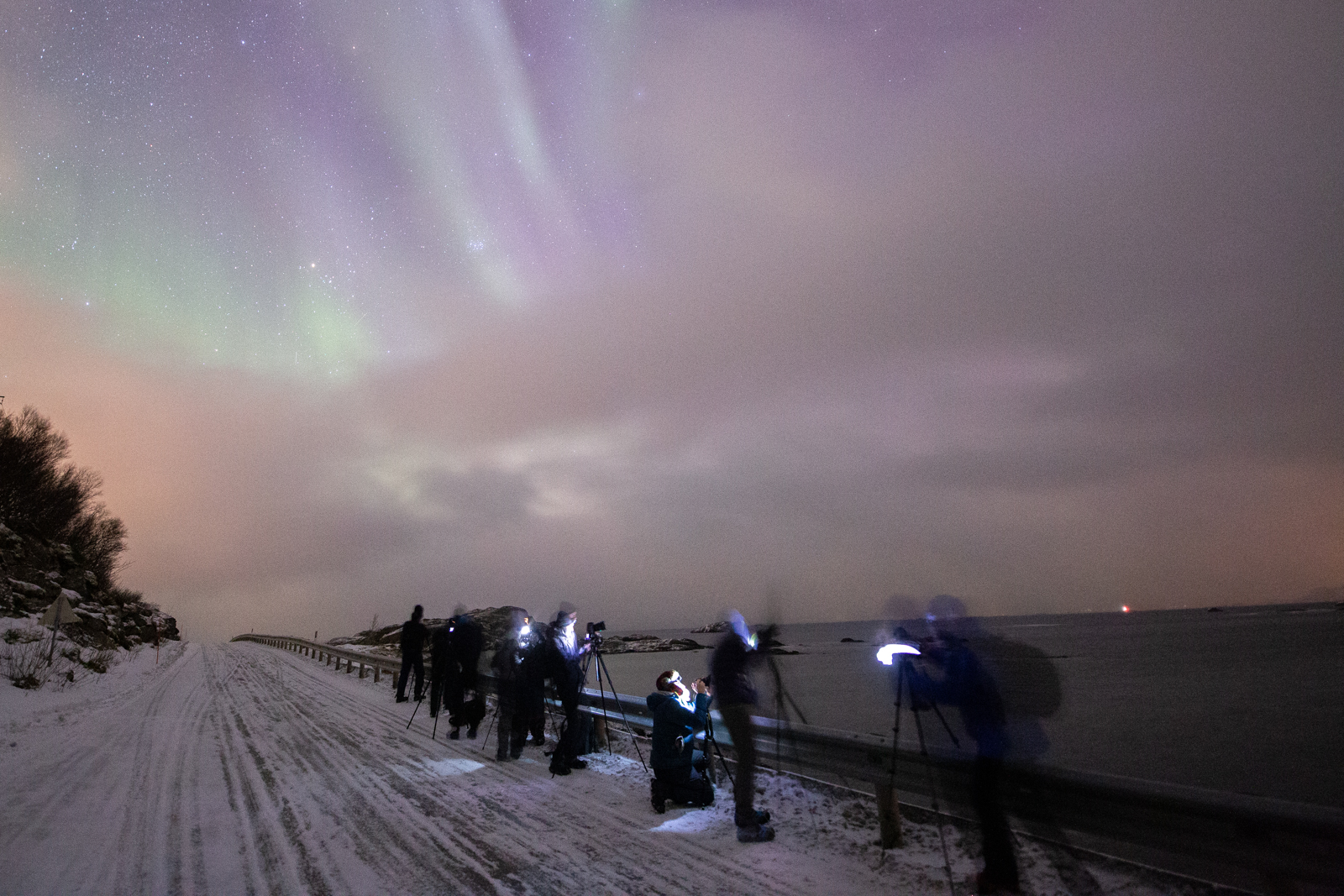 aurora boreale lofoten